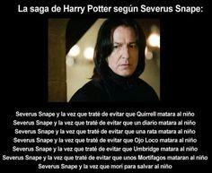 Casas de Hogwarts - La saga de Harry Potter según...
