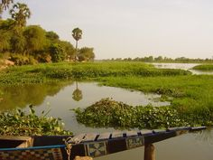 Niamey, Niger....I loved the river and the swampy smell