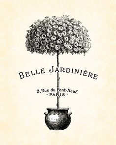 French Topiary Sepia Belle Jardiniere Art Print 8x10 Digital Collage Home Decor Garden Illustration Wall Hanging. $10,00, via Etsy.