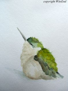 Hummingbird. Baby Bird watercolor painting original nursery art by 4WitsEnd, via Etsy: