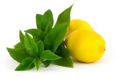 Lemon Verbena FO: This is absolutely the BEST lemon candle scent and soap fragrance oil we have found! Our Lemon Verbena is tangy yet smooth, with no fuel or furniture polish notes. Very clean & fresh for candles, soaps, scrubs and lotions for an invigorating, refreshing aroma.