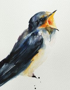 Barn Swallow (Hirundo rustica) - Close-up detail (artwork)