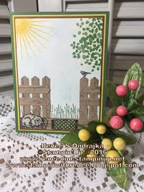 """Renee's Rubber Stampin' Ramblings: """"OSAT Blog Hop - Dog Days of Summer"""" New Crafts, Paper Crafts, New Home Cards, Retirement Cards, Stampin Up Catalog, Bird Cards, Card Io, Tole Painting, Card Sketches"""