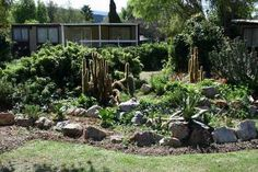 Landscaping Backyard Design Picture Interior Decor - Decorteen
