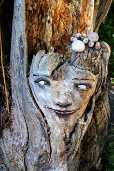 The Tree Project is an awesome ongoing art project...