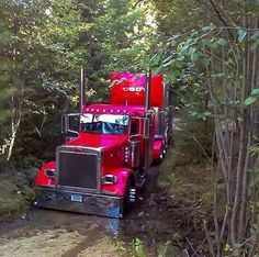 Shiny Peterbilt in the mud