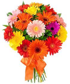 Best Online Flower Delivery, Cheap Flower Delivery, Flower Bouquet Delivery, Flower Delivery Service, Same Day Flower Delivery, Beautiful Bouquet Of Flowers, Amazing Flowers, Bouquet Flowers, Flower Bokeh