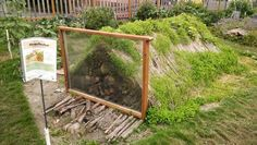 Hugelkultur garden bed ...start with a pile of wood, cover with soil then plant. Sounds very interesting and little effort once you get it built.