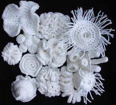 Ildiko Szabo   Hyperbolic Crochet Coral Reef