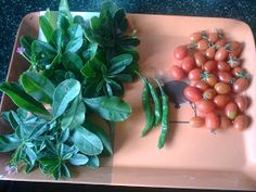 Rake and Spade: Growing (cherry) tomatoes in containers