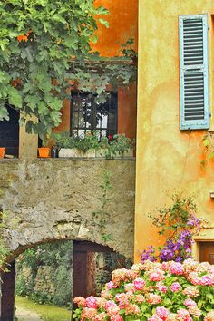 Ciona, Ticino | Swizerland (by elvetino and dide)