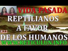 Vida pasada REPTILIANOS 22: REPTILIANOSPROMULGANDO LEYES A FAVOR DE LOS ...