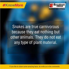 Weird but true !!