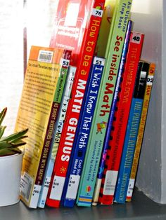 10 MATH CHAPTER BOOKS - great choices both for kids who love math and for those that don't.