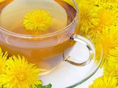 Traditionally, dandelion root tea is one of the most popular herbal remedies. The tea made using this plant is said to be a great tonic for a number of ailments. In this article, we will read more about this herbal tea. Dandelion Tea Benefits, Dandelion Root Tea, Dandelion Leaves, Dandelion Plant, Dandelion Flower, Chrysanthemum Flower, Lotus Flower, Effects Of Drinking, Water Retention Remedies