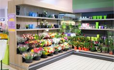 Store layout on pinterest display store design and design for Flower shop design layouts