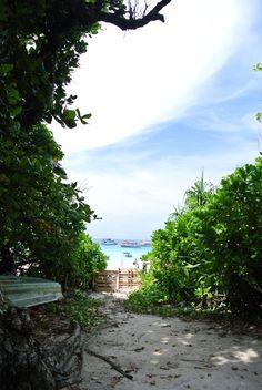 Paradise - Maya Bay