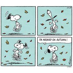 I'm hooked on Autumn!