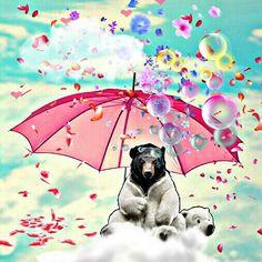 Bear rain Rain, Bear, Rain Fall, Bears, Waterfall