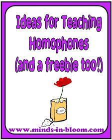 Minds in Bloom: Ideas for Teaching Homophones plus a Freebie!
