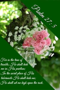 Psalm 27:5...Safe in the Lord