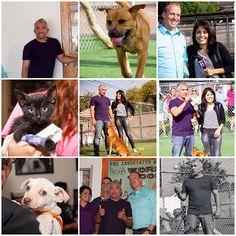 Cesar having a blast at Santa Paula Animal Rescue Center! #GDLA #CesarMillanFoundation #dogs #cats #animals #rescue #adopt