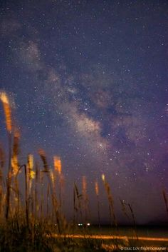 Outer Banks NC Local Artists Facebook post 8/11/15:  Milky Way bordered by seaoats.  Photographer: Eric Loy Photography.