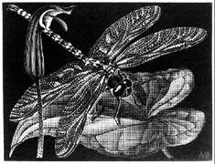 NOT DETECTED - M.C. Escher, c.1936, 251/469.