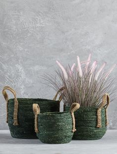 Our Olive green plant bags are not only the ideal way to display your favourite botanicals in your home, but are a great way to keep the place tidy! Store toys, clothes and unsightly items in our plant bags and keep your home clutter free. Plant Bags, Plant Basket, Jute Crafts, Diy Home Crafts, House Plants Decor, Plant Decor, Green Plants, Storage Baskets, Basket Weaving