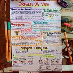 Resumo de Biologia : Origem da vida