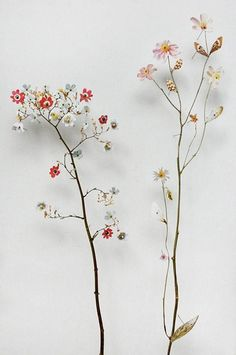 Wild Flowers: Anne Ten Donkelaar Re-Constructs Flowers With Pins and Paper - Flowers.tn - Leading Flowers Magazine, Daily Beautiful flowers for all occasions Flower Vases, Flower Art, Flower Arrangements, Flower Ideas, Art Floral, Ikebana, Dried Flowers, Paper Flowers, Long Flowers