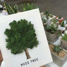 4번째 이미지 Moss Wall Art, Moss Art, Art Floral, Island Moos, Flower Festival, Moss Garden, How To Preserve Flowers, Garden Crafts, Creative Decor