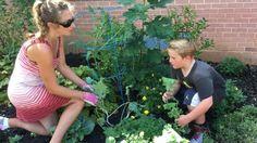 Planting side garden