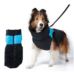 Dealglad® Large Pet Dog Waterproof Winter Warm Padded Puffer Vest Coat Down Jacket Clothes Costume Apparel (Blue, L-M) Features: 100% brand new and high quality! Waterproof quilted winter coats for dogs, cats, pets. Read more http://dogpoundspot.com/dealglad-large-pet-dog-waterproof-winter-warm-padded-puffer-vest-coat-down-jacket-clothes-costume-apparel-blue-l-m/ Visit http://dogpoundspot.com for more dog review products