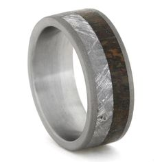 Hey, I found this really awesome Etsy listing at https://www.etsy.com/listing/216060983/meteorite-ring-titanium-ring-with-gibeon