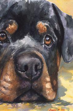 Drawing Animals Rottweiler watercolor Print of the Original Watercolor Painting art cool Rottie Animal Paintings, Animal Drawings, Dog Drawings, Rottweiler Puppies, Rottweiler Facts, Rottweiler Training, Beagle, Dog Behavior, Pics Art