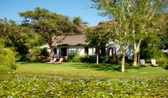 River Reeds I & II - Luxury rooms overlook landscaped gardens, and the breathtaking beauty of the untamed nature. Luxury Rooms, Us Travel, Wilderness, South Africa, Wildlife, Gardens, River, Landscape, House Styles