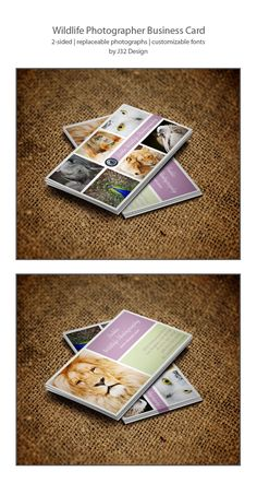Wildlife Photographer Business Cards on deviantART