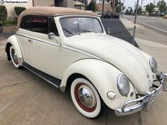 Best classic cars and more! Volkswagen Beetle Cabriolet, Vw Cabriolet, Volkswagen 181, Vw Classic, Best Classic Cars, Weird Cars, Crazy Cars, Vans, Vw Cars