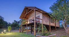 Safari adventures at Chisomo