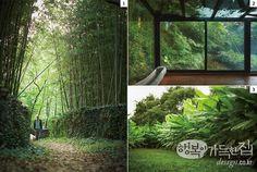 행복이가득한집 Design your lifestyle 동양화가 박태후 화가의 정원
