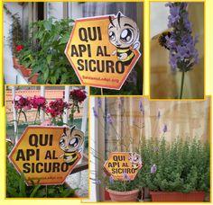 Da me tutti al sicuro! Voglio salvare le api e per questo ho appoggiato Greenpeace firmando la petizione. http://salviamoleapi.org/   #SOSapi