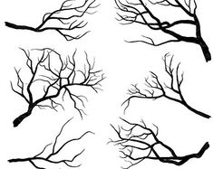 Birch Tree Clip Art Winter Forest Tree Branch by FishScraps