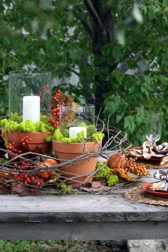 #Garten #Deko #Herbst TischDeko