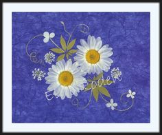 At Green Mountain Pressed Flowers in Wilmington: Daisies on Blue