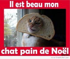 Combien de j'aime pour ce Chat Pain de Noël ? http://www.graphicami.com/chat-pain-sapin-de-noel.html