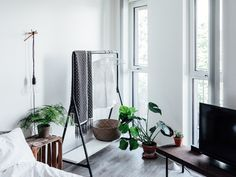 6 Indoor Plants That Are the Best for Your Bedroom