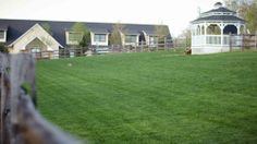 A great view from the Dog Park!greenbriarpet… – Greenbriar Pet Hospital a… A great view from the Dog Park!greenbriarpet… – Greenbriar Pet Hospital and Luxury Resort – Pet Boarding, Pet Resort, Dog Park, Pet Hospital, Great View, Dog Grooming, Dog Training, Mansions, Luxury