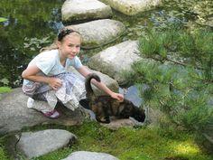 Arendse og kat i De japanske haver, 2010