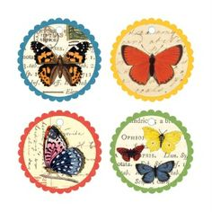 Natural History Butterfly Gift Tags from Galison